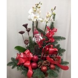 Centro navideño con orquídea